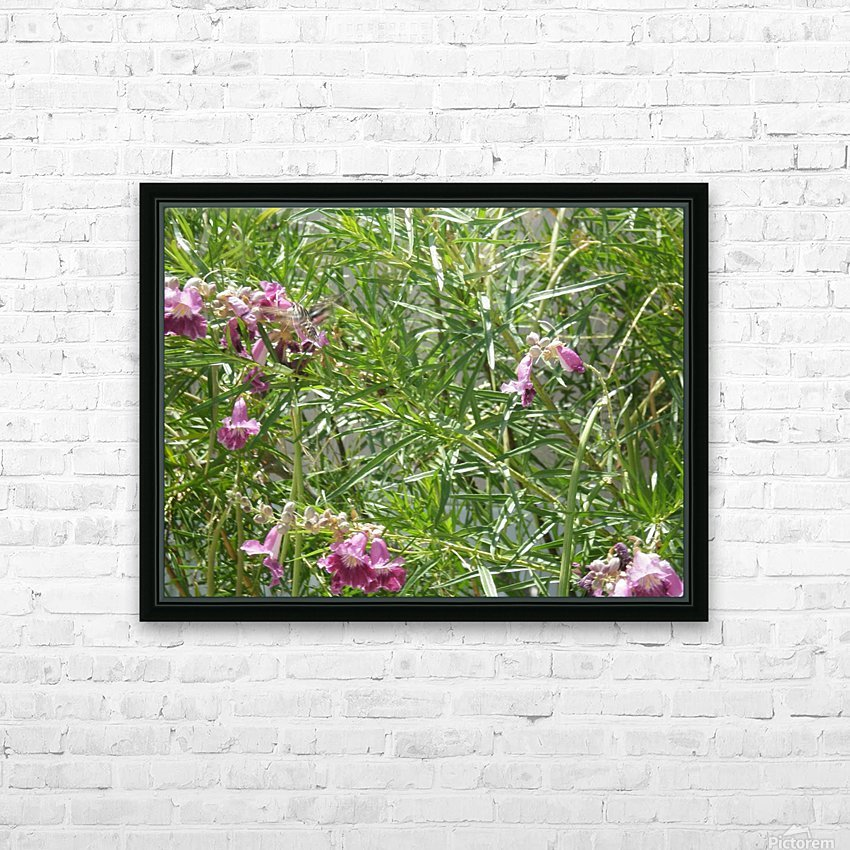 hummingbirdindesertwillow lrg HD Sublimation Metal print with Decorating Float Frame (BOX)