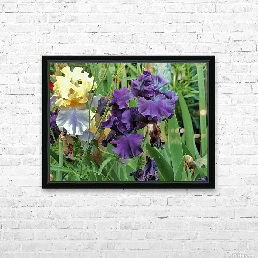 Two Iris HD Sublimation Metal print with Decorating Float Frame (BOX)