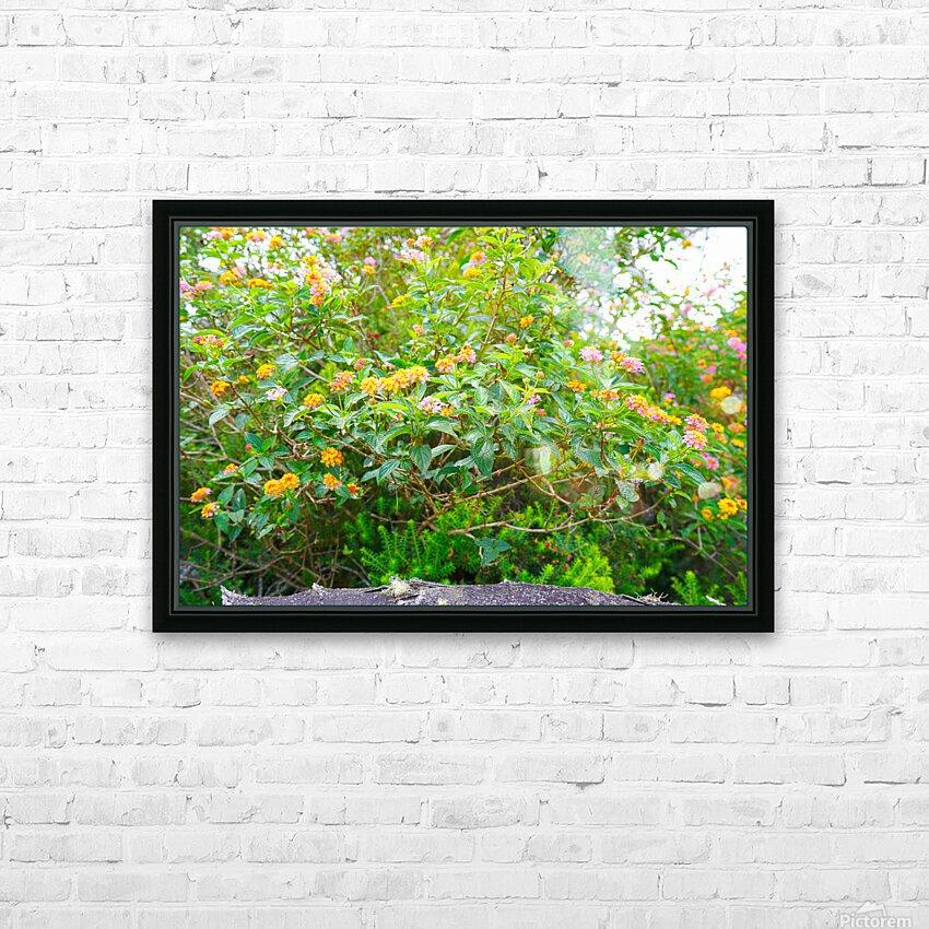 Wild Flowers Waimea Canyon Kauai HD Sublimation Metal print with Decorating Float Frame (BOX)