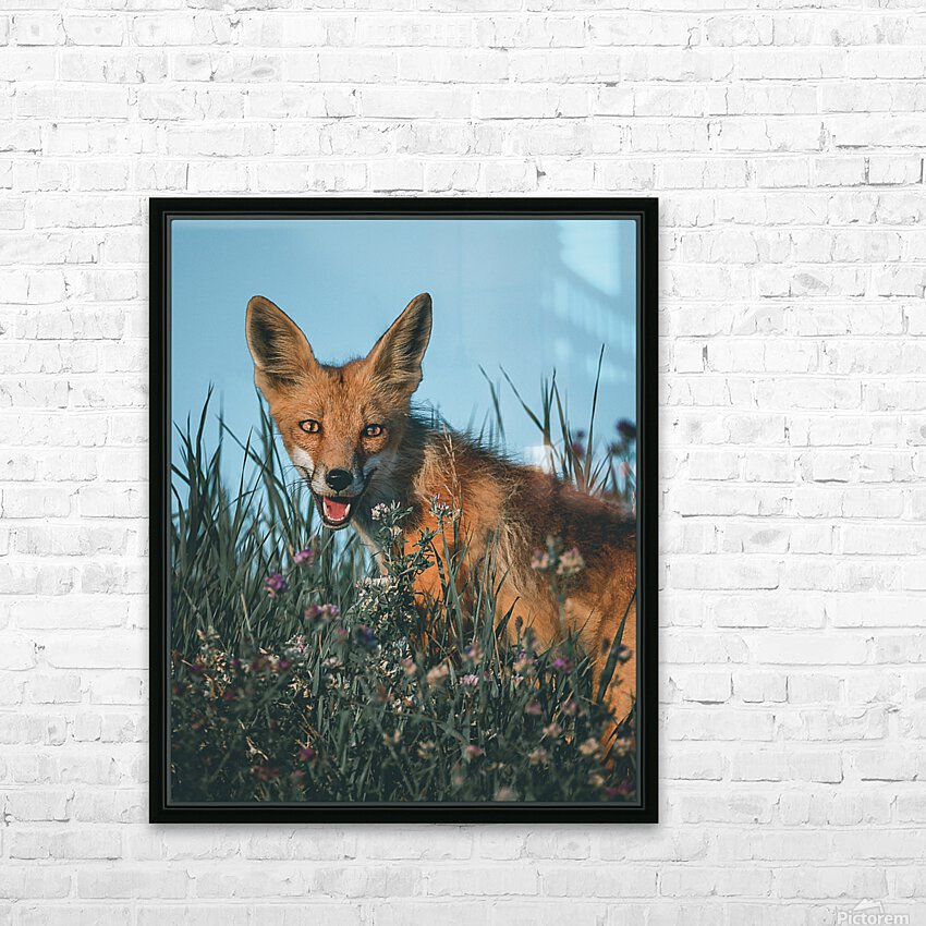 Fantastic Fox  HD Sublimation Metal print with Decorating Float Frame (BOX)