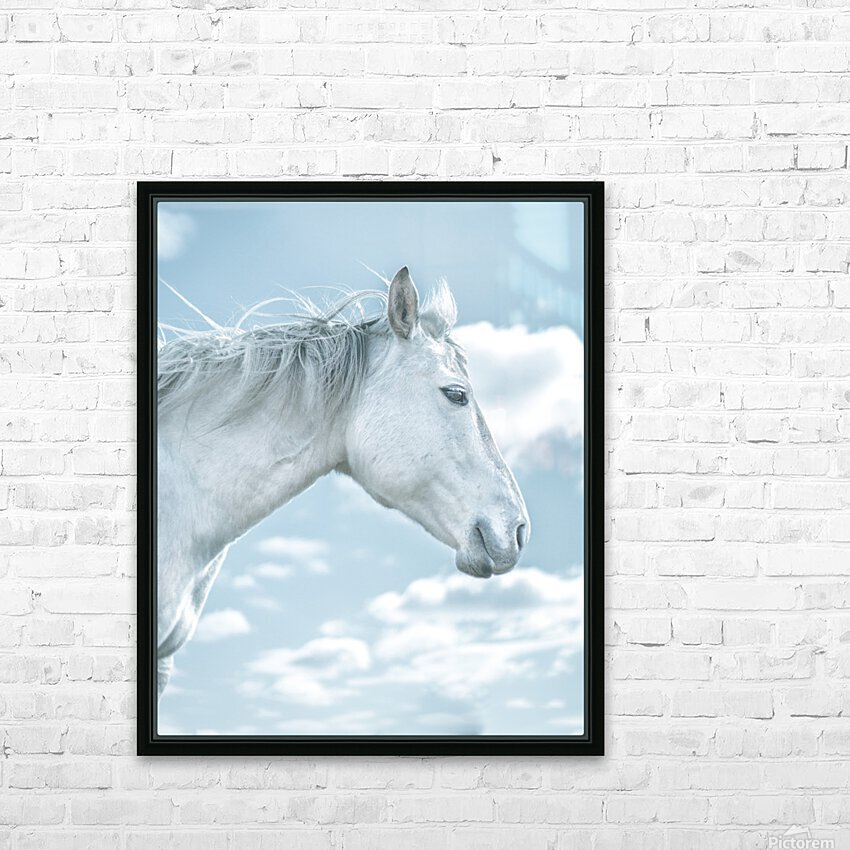 Pegasus HD Sublimation Metal print with Decorating Float Frame (BOX)