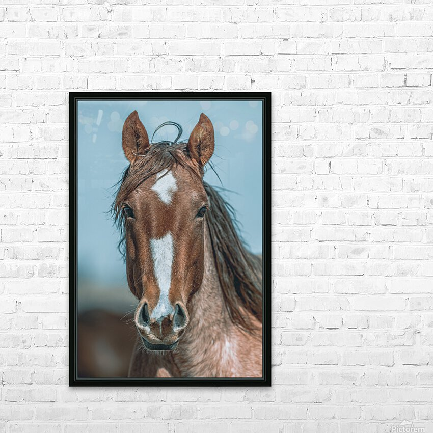 Ol Pal HD Sublimation Metal print with Decorating Float Frame (BOX)