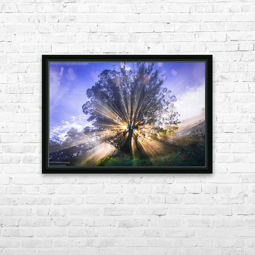 Rays of Light HD Sublimation Metal print with Decorating Float Frame (BOX)