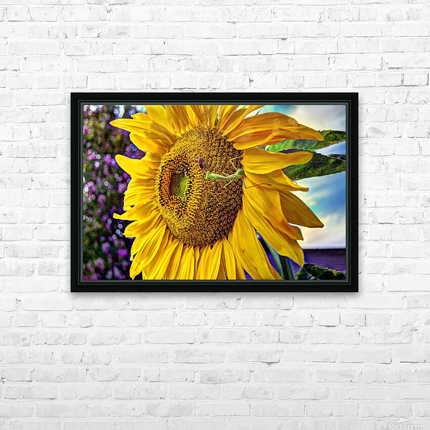 Sunflower Creative HD Sublimation Metal print with Decorating Float Frame (BOX)