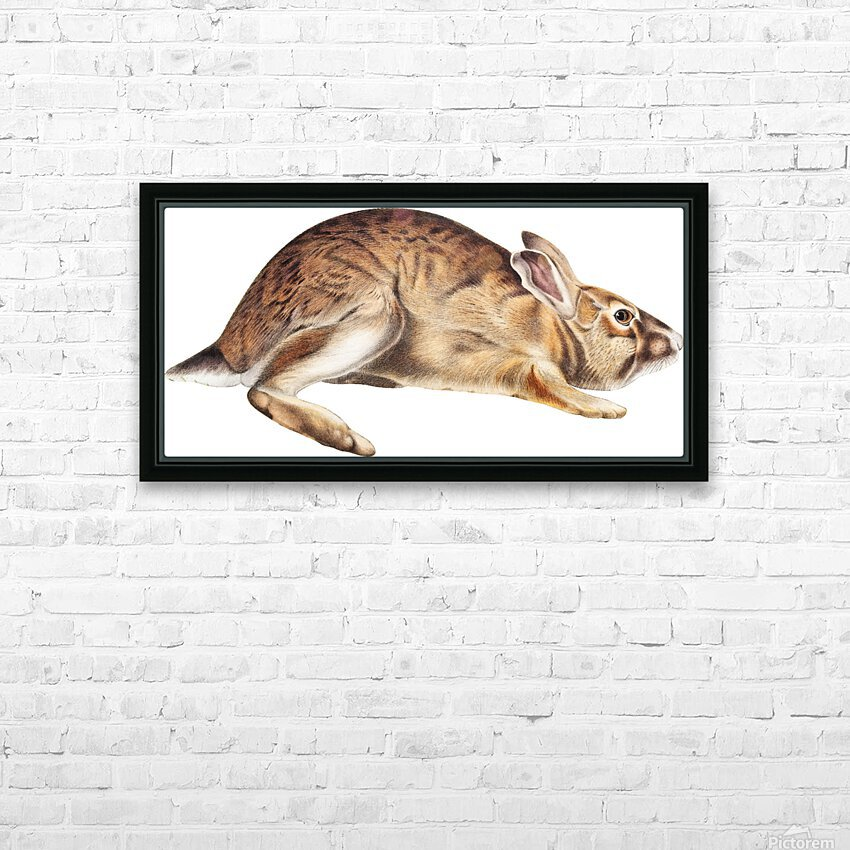 rabbit portrait   pet portrait   custom bunny portrait   custom dog portrait   animal lover gift   gift for her   gift for pet mom HD Sublimation Metal print with Decorating Float Frame (BOX)