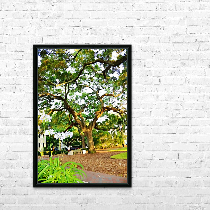 Savannah HD Sublimation Metal print with Decorating Float Frame (BOX)