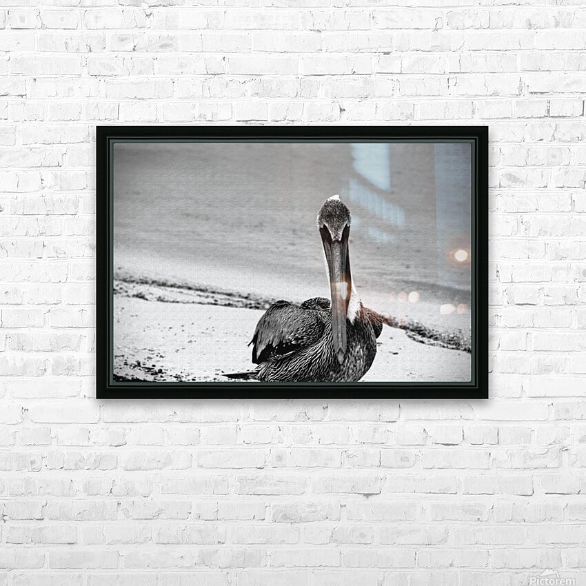 Pelican HD Sublimation Metal print with Decorating Float Frame (BOX)