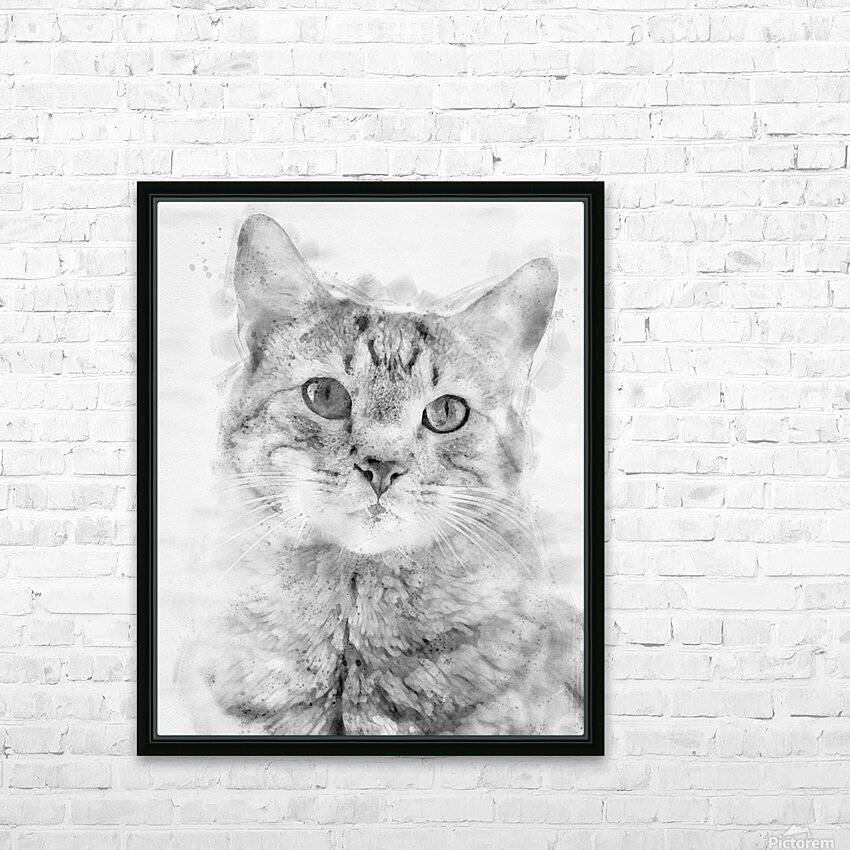 Kitten Noir HD Sublimation Metal print with Decorating Float Frame (BOX)