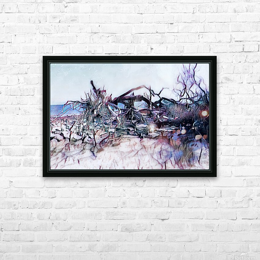 Driftwood Beach HD Sublimation Metal print with Decorating Float Frame (BOX)