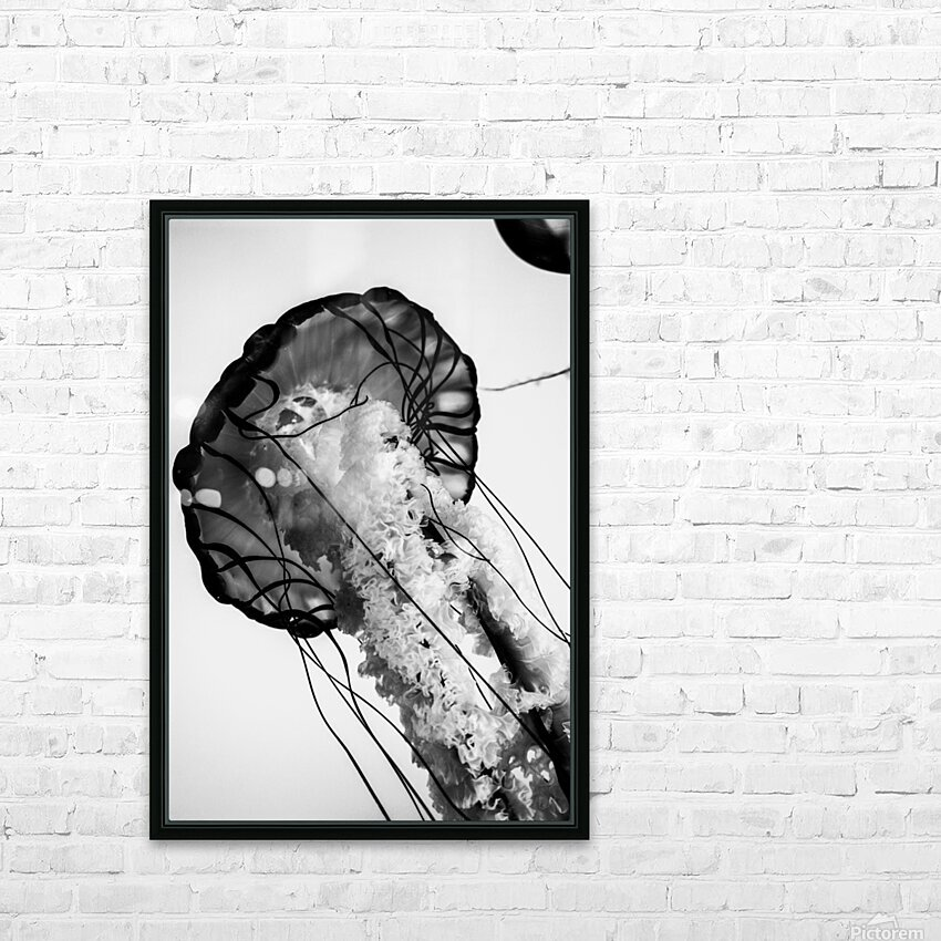 B&W Jelly HD Sublimation Metal print with Decorating Float Frame (BOX)