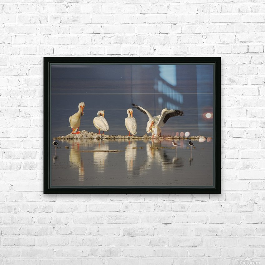 Pelican Reflections 2 HD Sublimation Metal print with Decorating Float Frame (BOX)