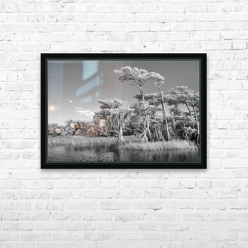 Blue cypress trees horizontal HD Sublimation Metal print with Decorating Float Frame (BOX)