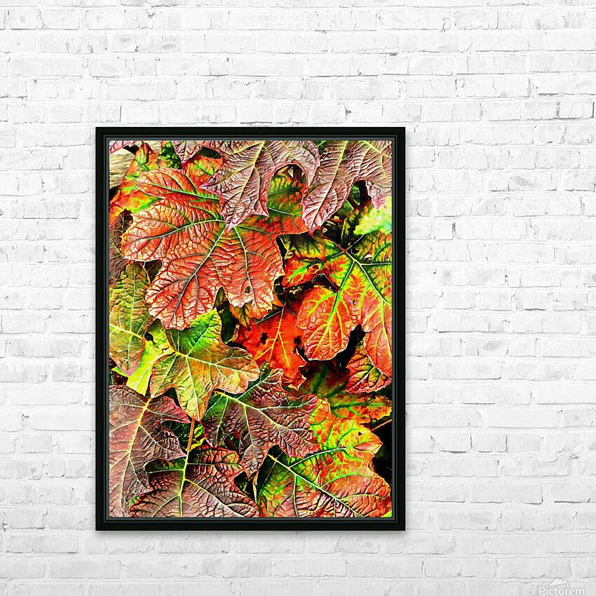Oak Leaved Hydrangea In Autumn HD Sublimation Metal print with Decorating Float Frame (BOX)