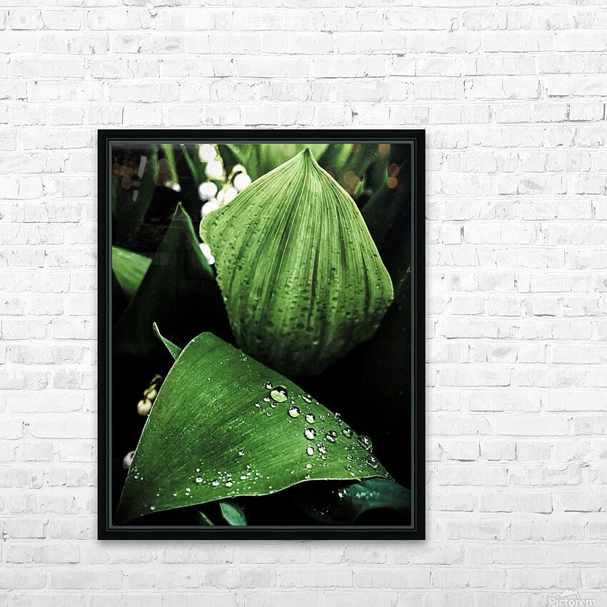 Dainty Drops HD Sublimation Metal print with Decorating Float Frame (BOX)
