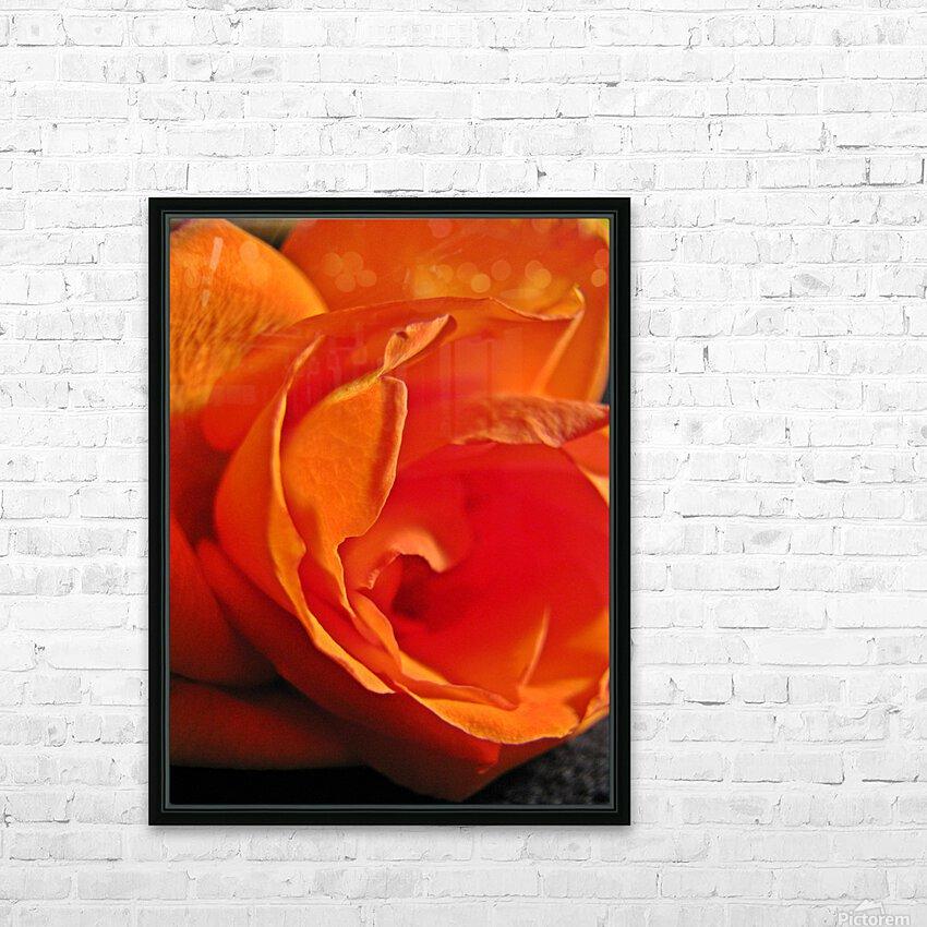 Passion Flower HD sublimation métal imprimé avec décoration flotteur cadre (boîte)