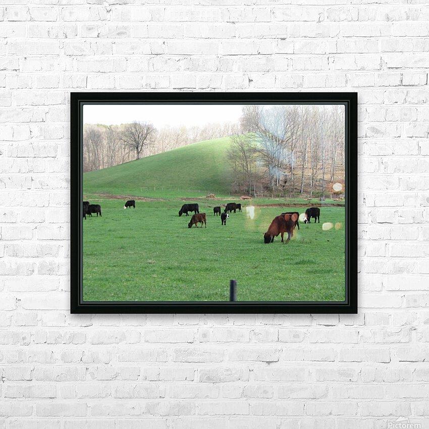 Cows Lullaby HD sublimation métal imprimé avec décoration flotteur cadre (boîte)
