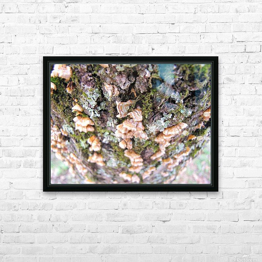 Nature HD sublimation métal imprimé avec décoration flotteur cadre (boîte)