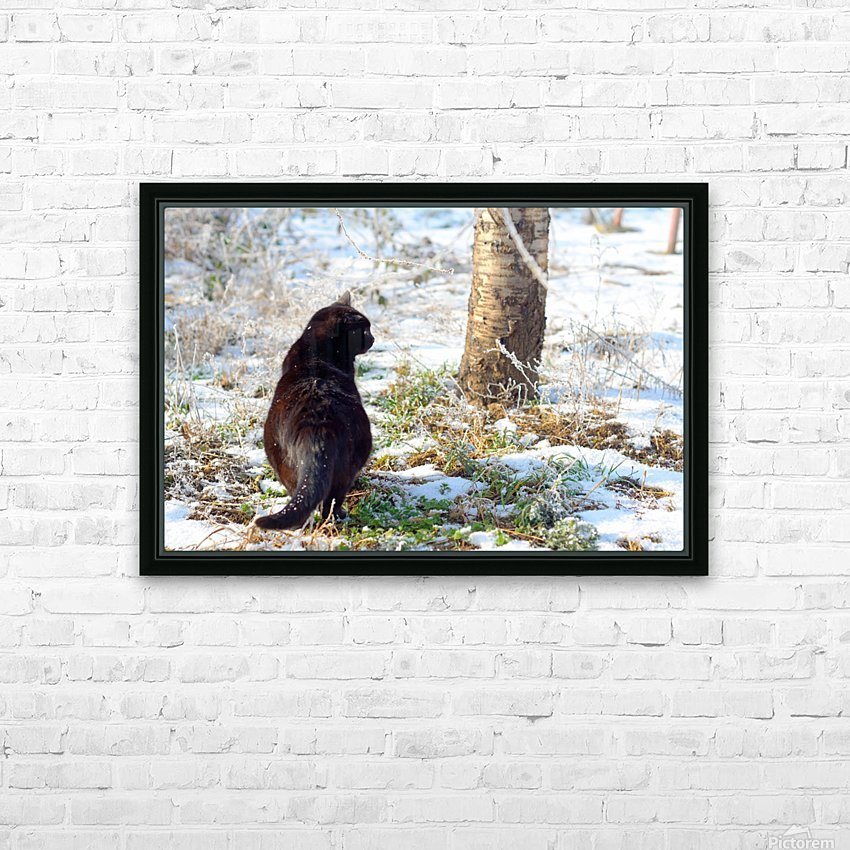 Cat in a sunny frozen garden HD Sublimation Metal print with Decorating Float Frame (BOX)