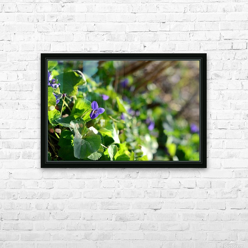 Spring sweet violets in the garden HD Sublimation Metal print with Decorating Float Frame (BOX)
