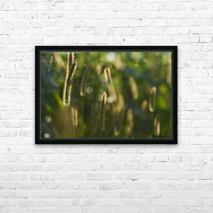 Glowing field grass HD Sublimation Metal print with Decorating Float Frame (BOX)