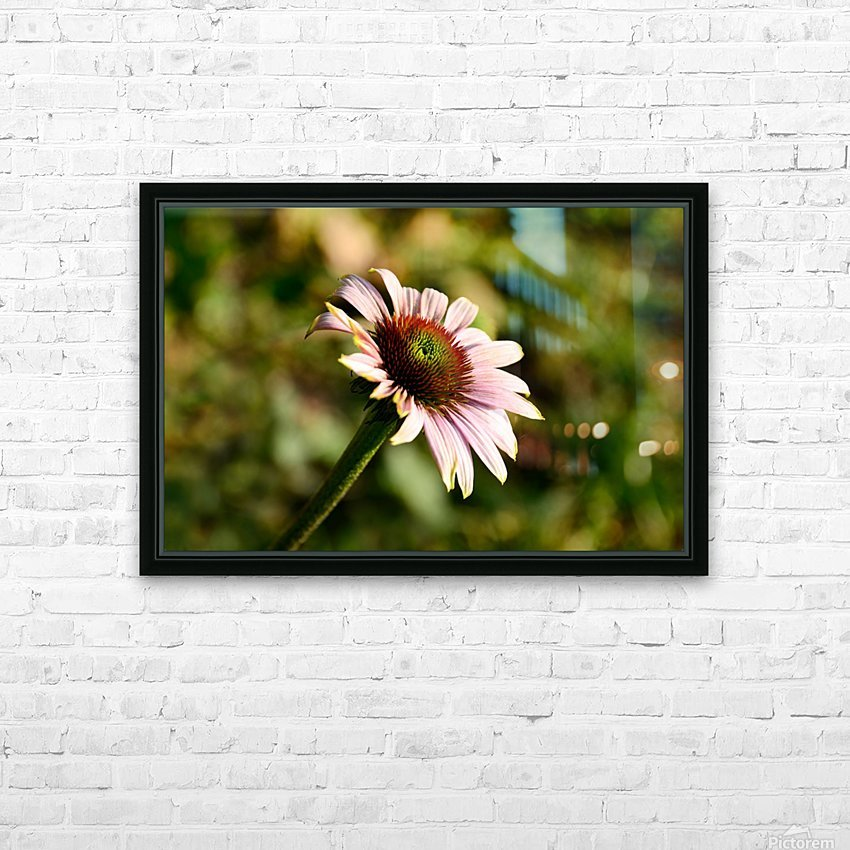 Autumn Echinacea HD Sublimation Metal print with Decorating Float Frame (BOX)