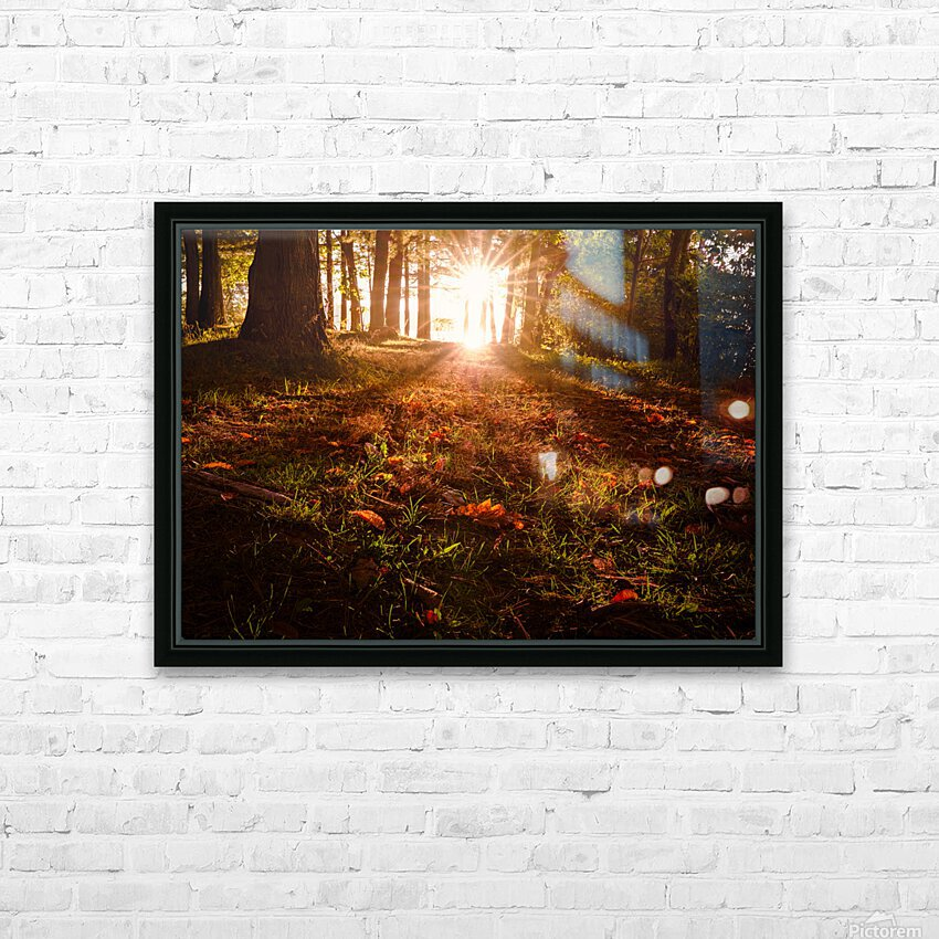 Autumn Sunrise HD Sublimation Metal print with Decorating Float Frame (BOX)