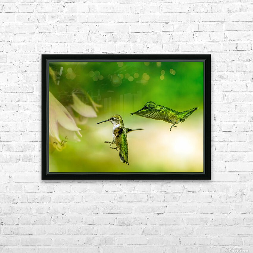 Emerald Hummingbirds HD Sublimation Metal print with Decorating Float Frame (BOX)
