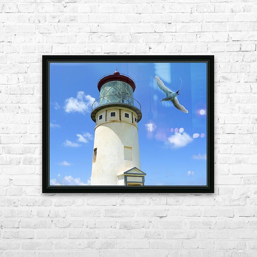 Kilauea Lighthouse and Wildlife Refuge on Kauai HD Sublimation Metal print with Decorating Float Frame (BOX)