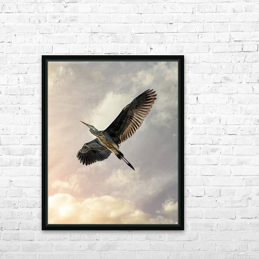 Flight Of The Heron HD Sublimation Metal print with Decorating Float Frame (BOX)