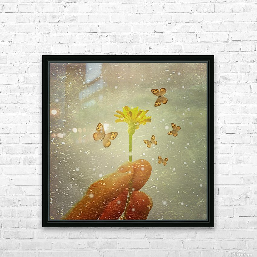 Butterflies Charmer HD Sublimation Metal print with Decorating Float Frame (BOX)
