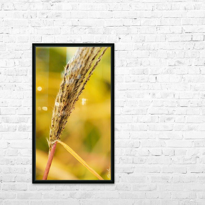 Flamboyantes Graminees no. 6 - Flamboyant Grasses no. 6 HD sublimation métal imprimé avec décoration flotteur cadre (boîte)