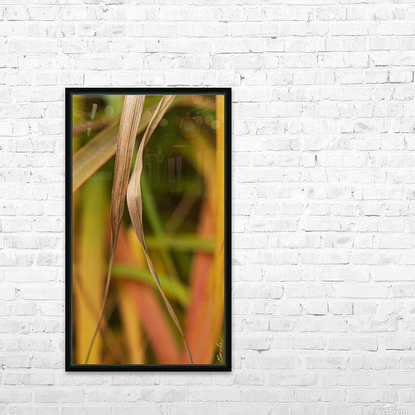 Flamboyantes Graminees no. 5 - Flamboyant Grasses no. 5 HD sublimation métal imprimé avec décoration flotteur cadre (boîte)