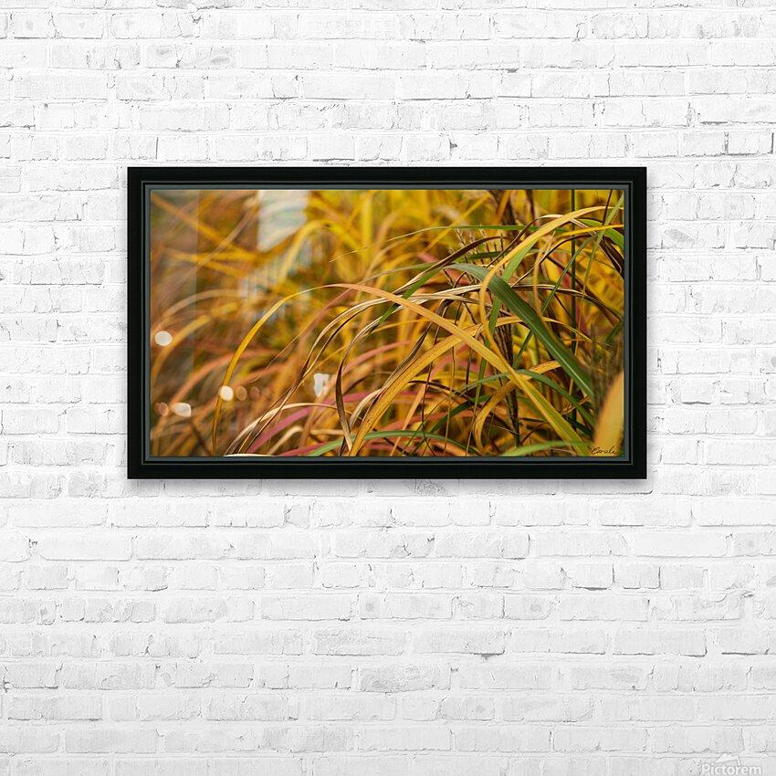 FLAMBOYANTES GRAMINEES NO. 1 - FLAMBOYANT GRASSES NO. 1 HD sublimation métal imprimé avec décoration flotteur cadre (boîte)