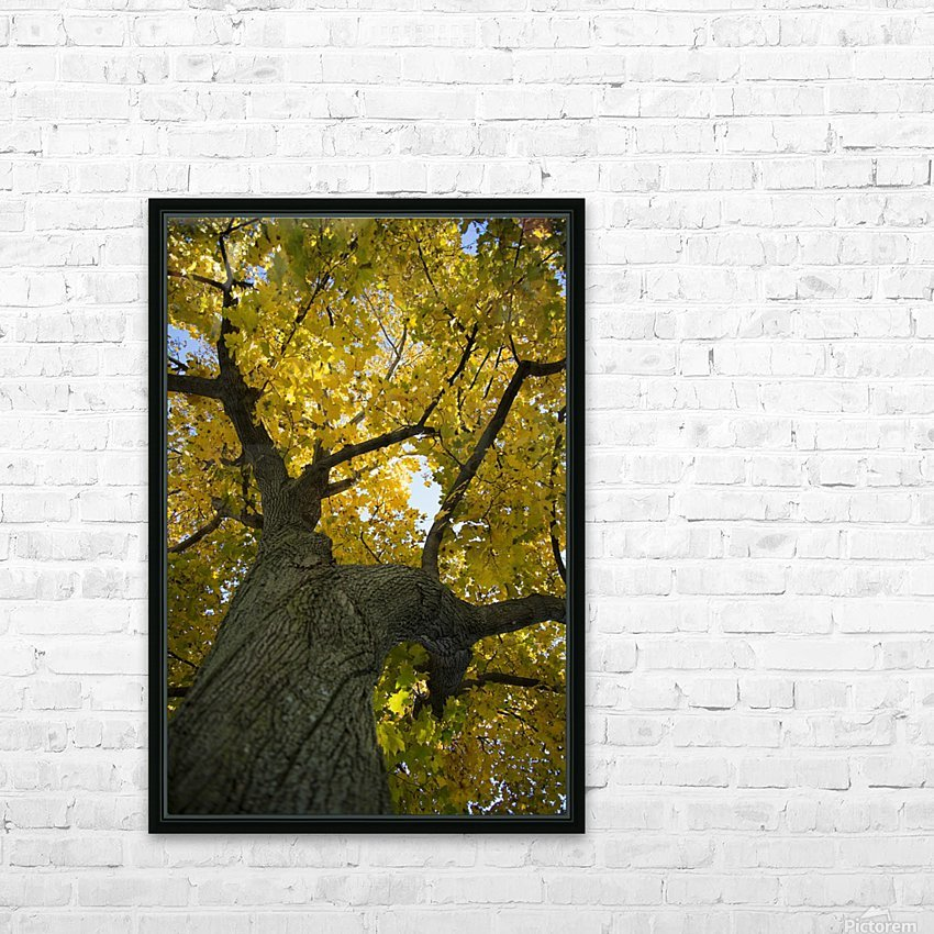 Fall Tree HD Sublimation Metal print with Decorating Float Frame (BOX)