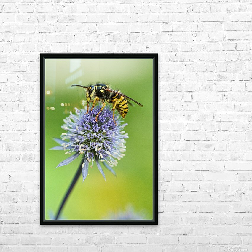 Country Wasp HD Sublimation Metal print with Decorating Float Frame (BOX)