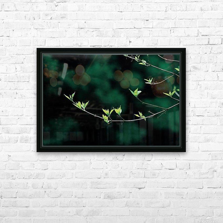 landscape_2_0163 HD Sublimation Metal print with Decorating Float Frame (BOX)