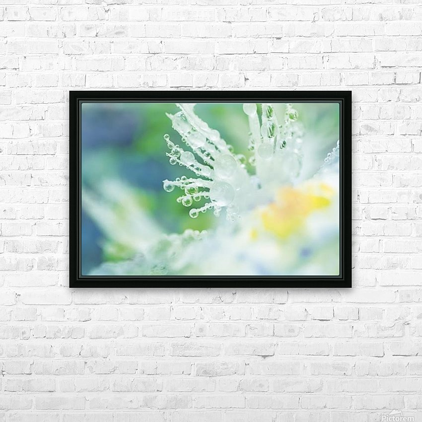landscape_2_0965 HD Sublimation Metal print with Decorating Float Frame (BOX)