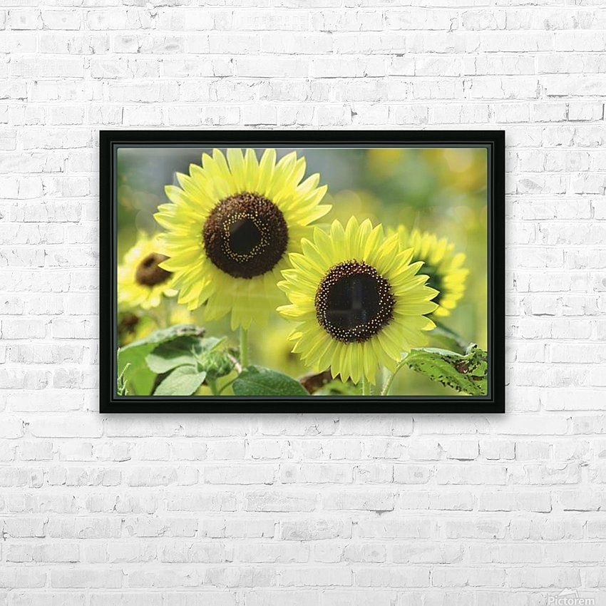 landscape_2_0976 HD Sublimation Metal print with Decorating Float Frame (BOX)
