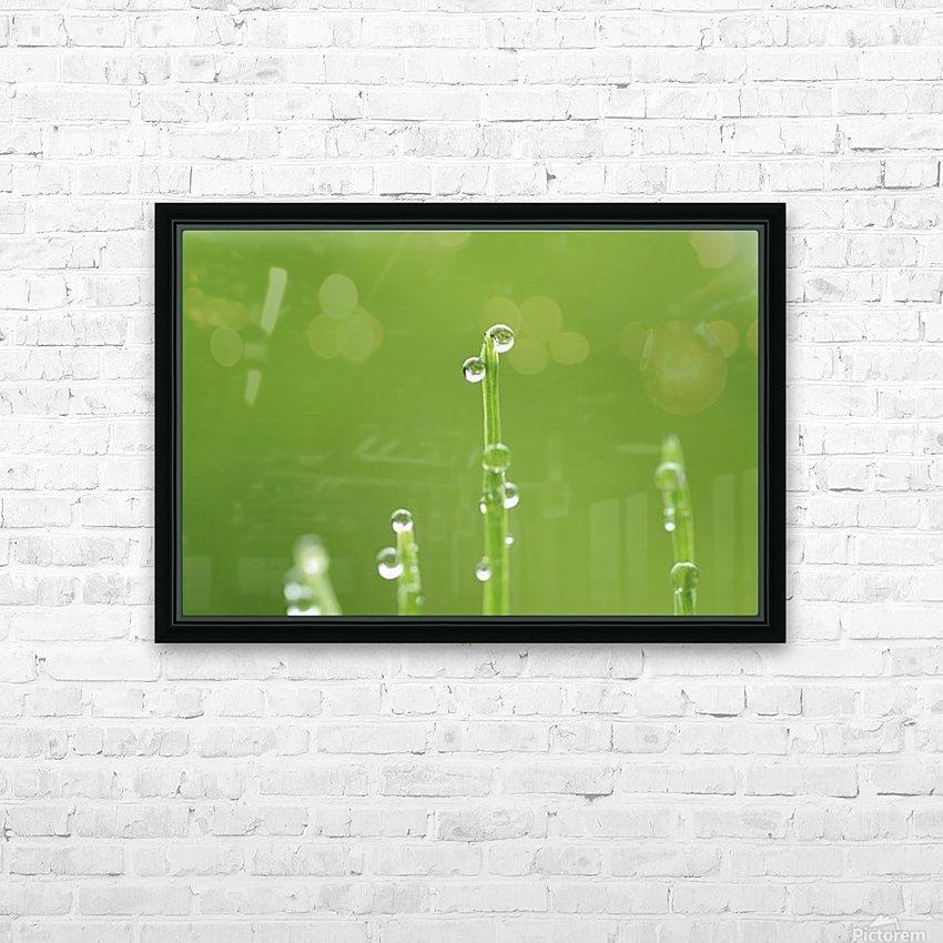 landscape_2_0986 HD Sublimation Metal print with Decorating Float Frame (BOX)