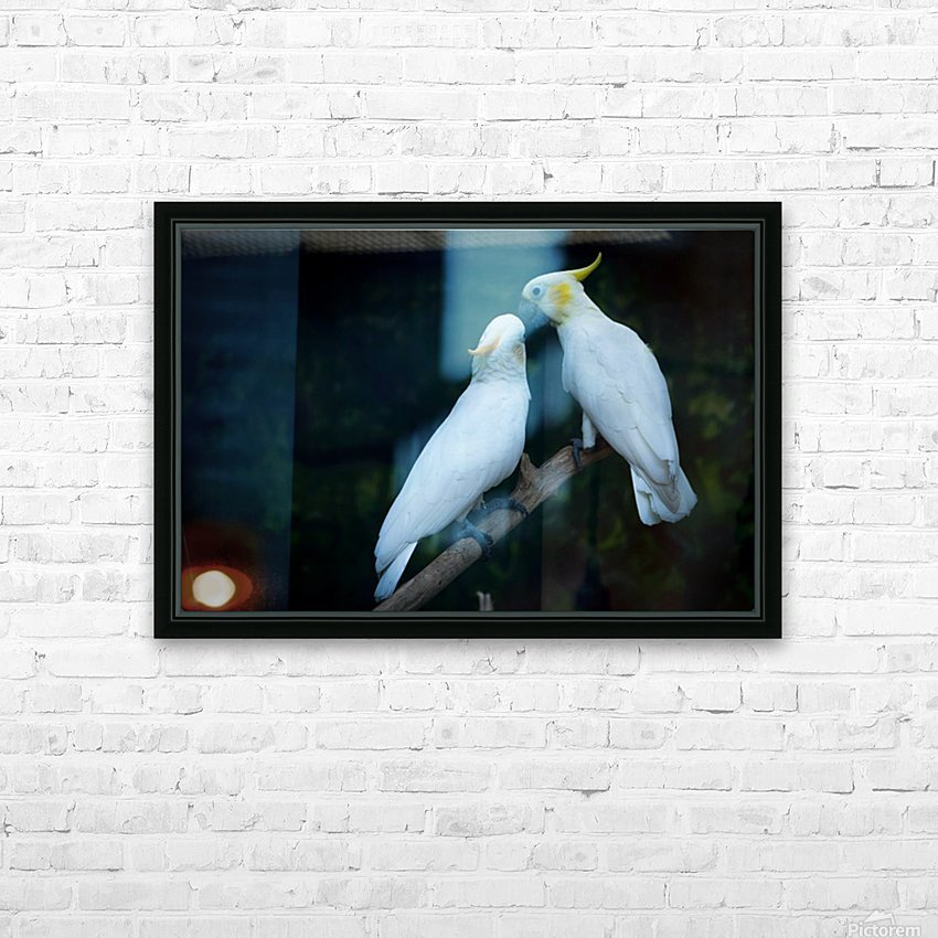 Nature and Birds   15 HD Sublimation Metal print with Decorating Float Frame (BOX)