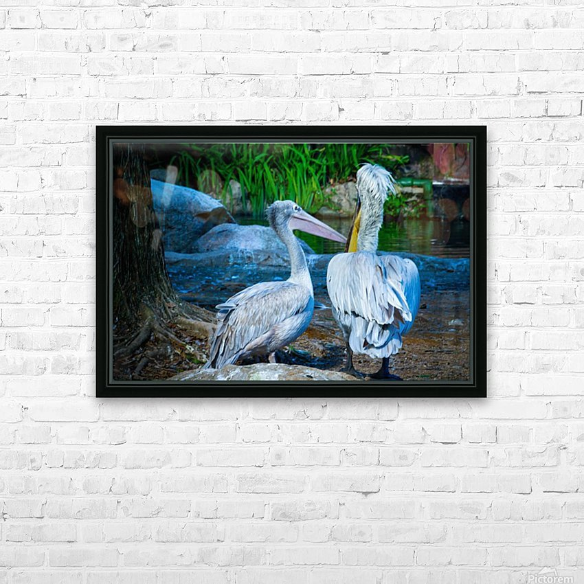 Nature and Birds   9 HD Sublimation Metal print with Decorating Float Frame (BOX)