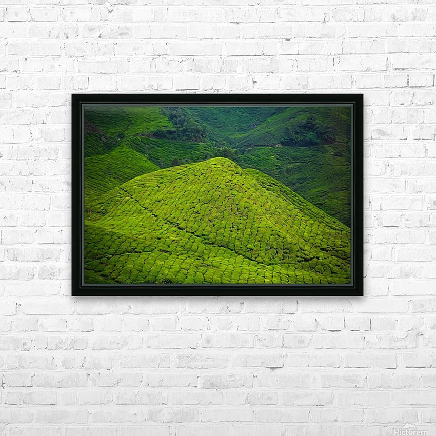 Tea plantations HD Sublimation Metal print with Decorating Float Frame (BOX)