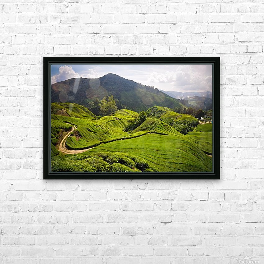 Tea plantations, Malaysia HD Sublimation Metal print with Decorating Float Frame (BOX)