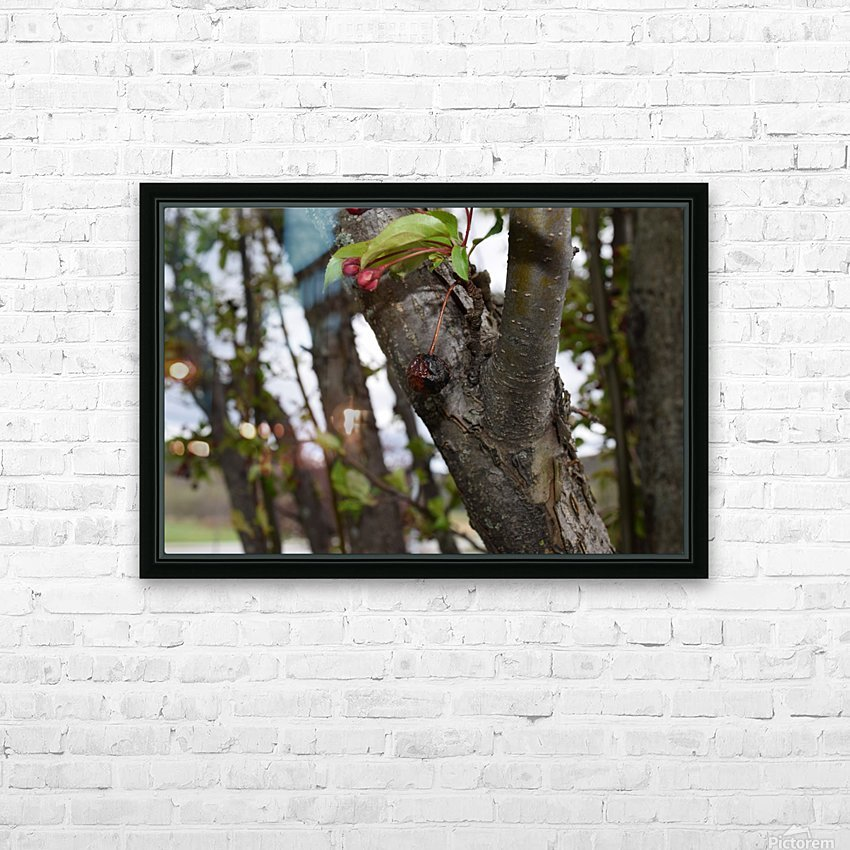 Rotten Berry  HD Sublimation Metal print with Decorating Float Frame (BOX)