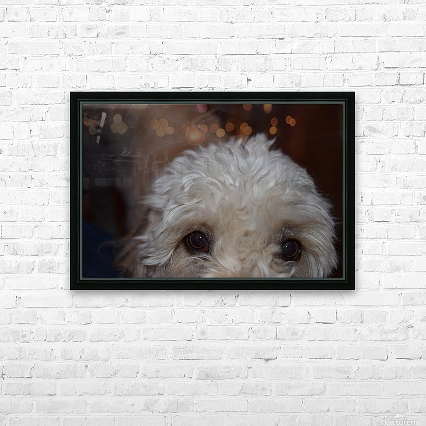 Hungry Eyes  HD Sublimation Metal print with Decorating Float Frame (BOX)