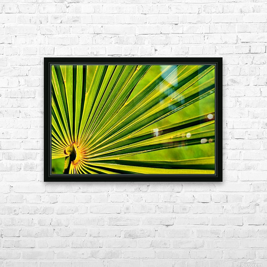 PALM-TREE LEAF 1 HD Sublimation Metal print with Decorating Float Frame (BOX)