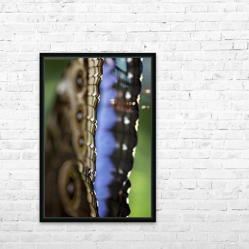 Blue Morpho HD Sublimation Metal print with Decorating Float Frame (BOX)