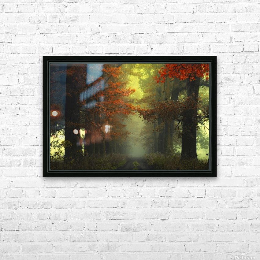 Shaman_s road on the other side HD Sublimation Metal print with Decorating Float Frame (BOX)
