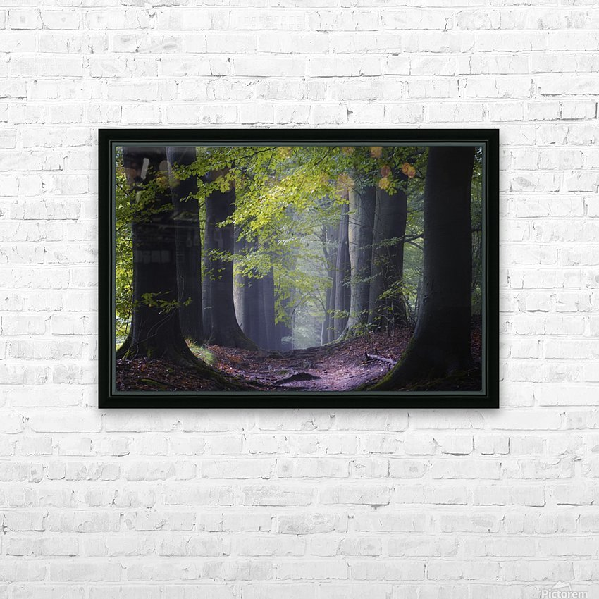 Alley of replenishing energy HD Sublimation Metal print with Decorating Float Frame (BOX)