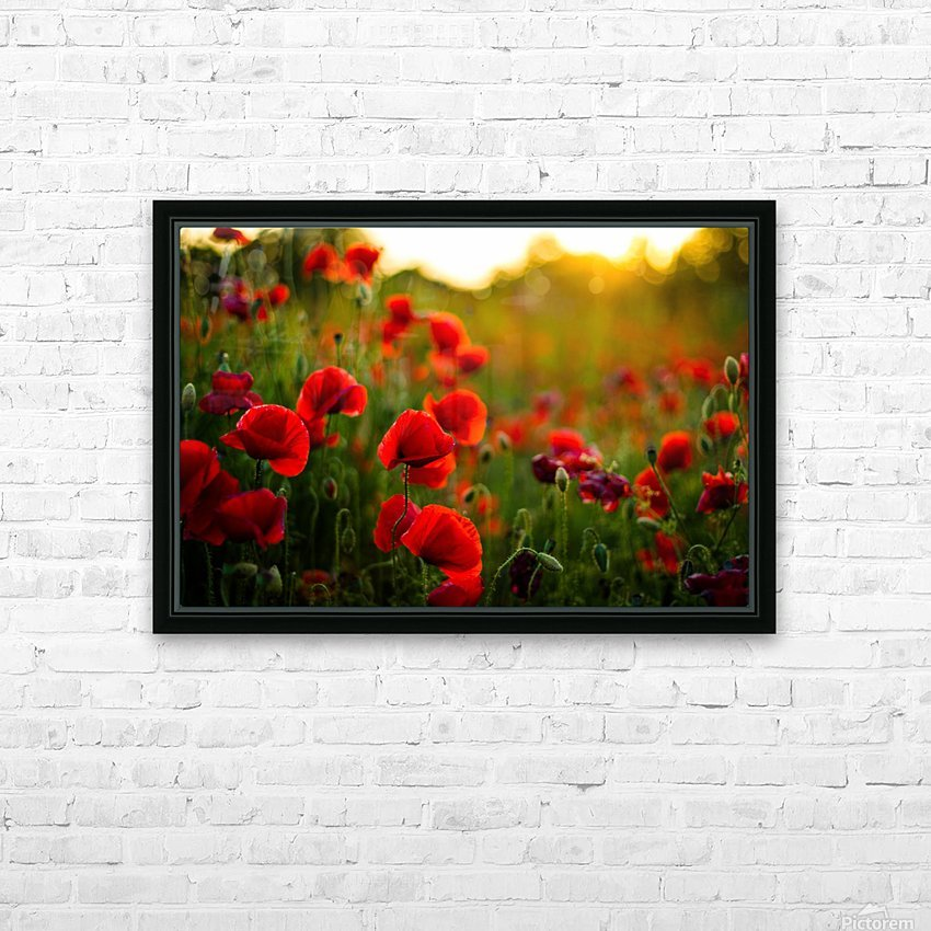 Beautiful Sunset poppy flowers HD Sublimation Metal print with Decorating Float Frame (BOX)